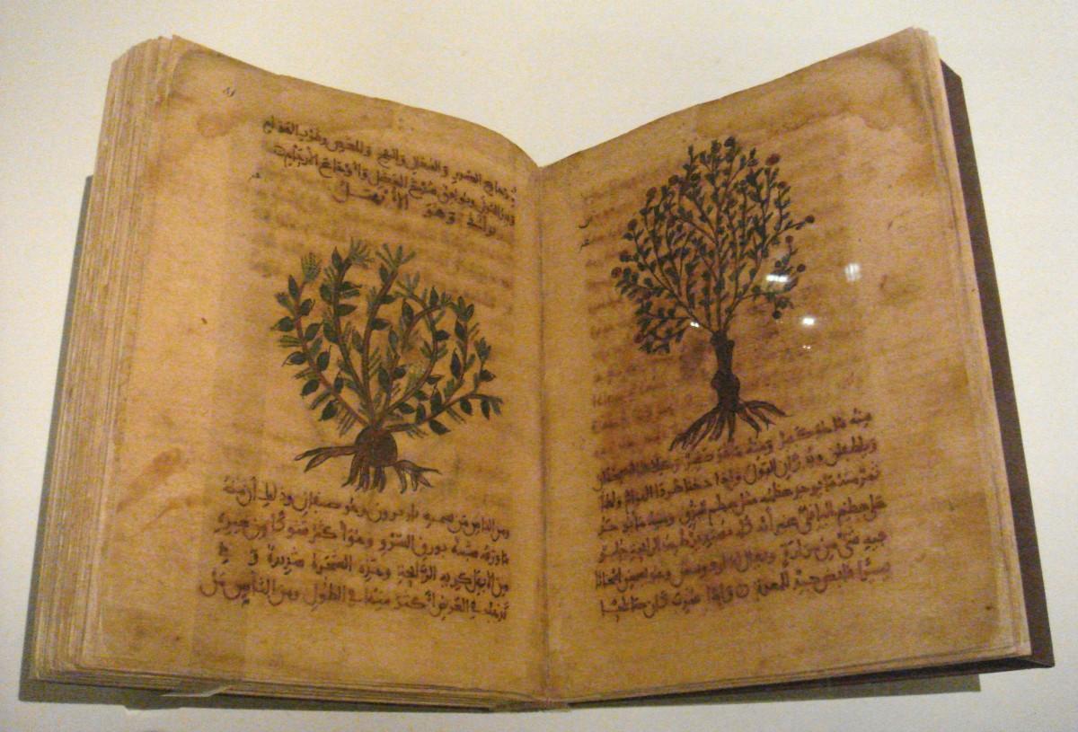 Dioscorides' De Materia Medica (12th-13th Centuries)