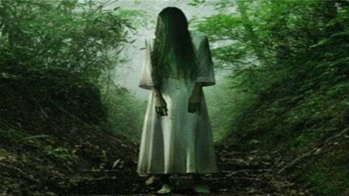 Woman ghost in field or woods