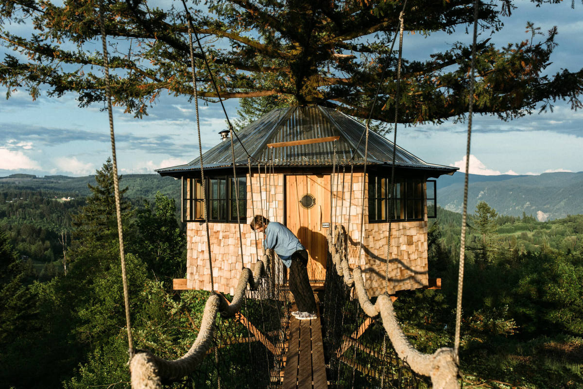 Treehouse with rope bridge