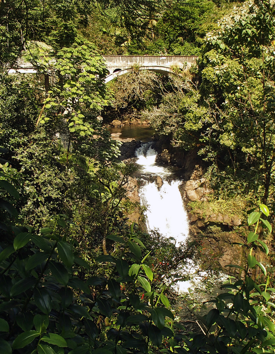 Small waterfall under an old bridge.