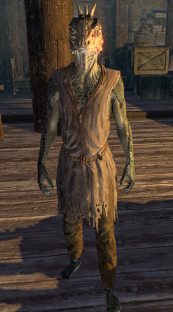 Stands-In-Shallows, a male Argonian and skooma addict.
