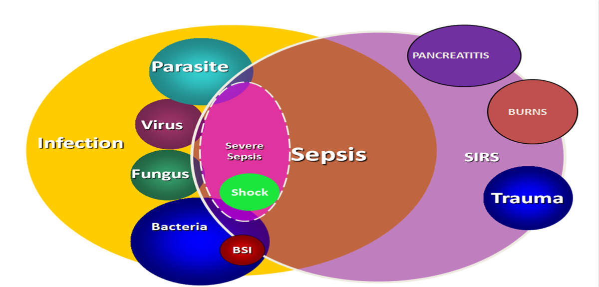 Adapted from SCCM ACCP Consensus Guidelines BSI= Blood Stream Infections