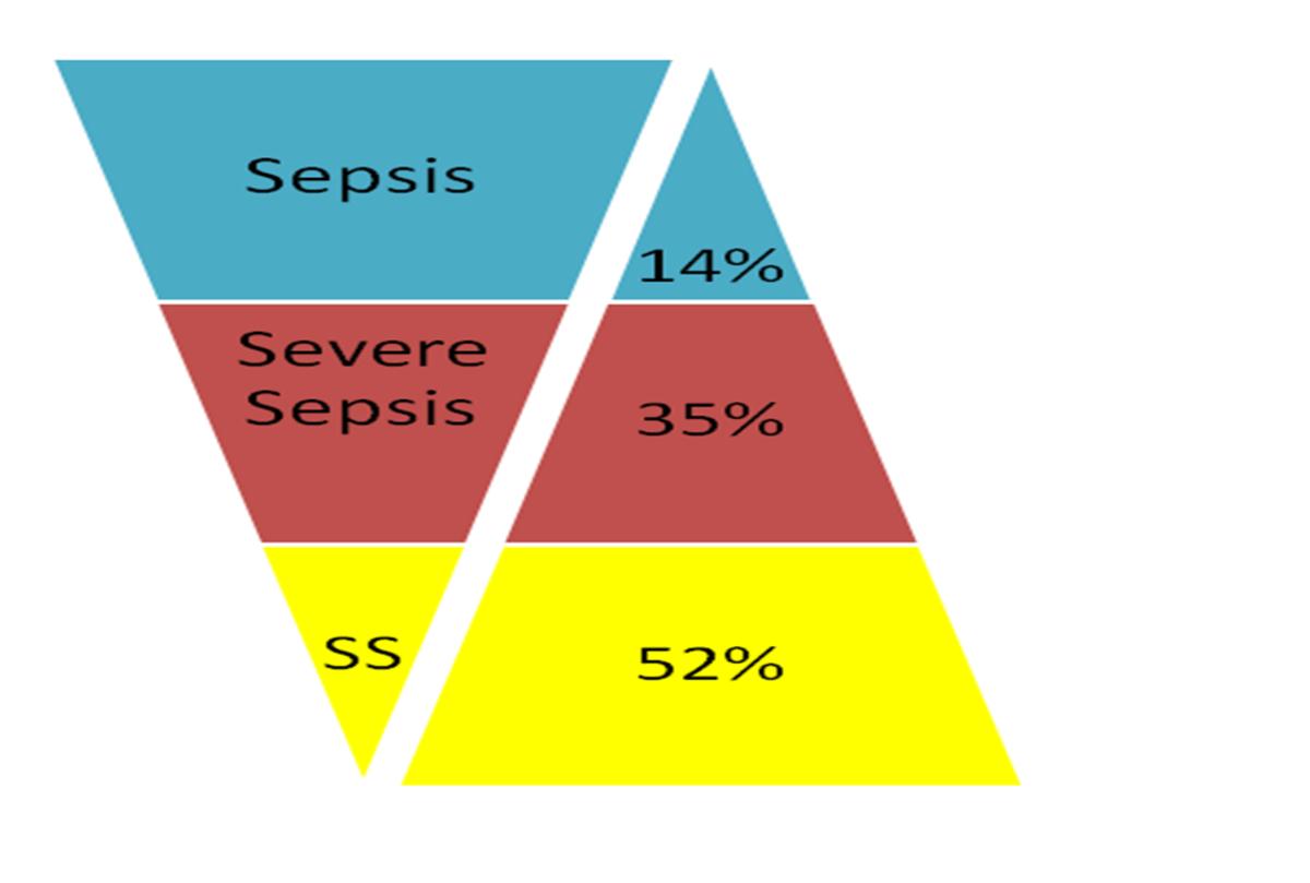 Seligman R et al.Crit. Care 2006 SS= Septic Shock