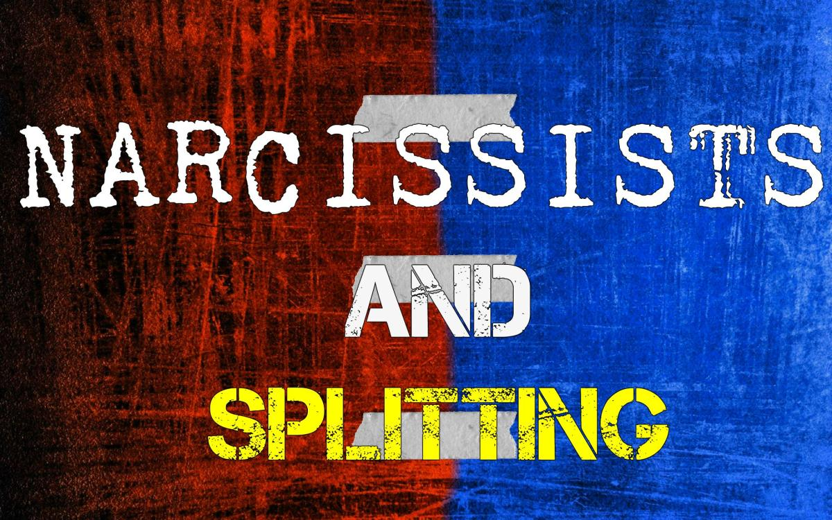 Narcissists and Splitting