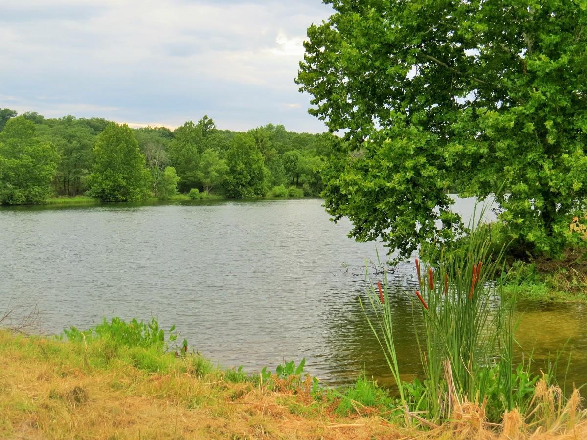 Scrivner Conservation Area, Missouri