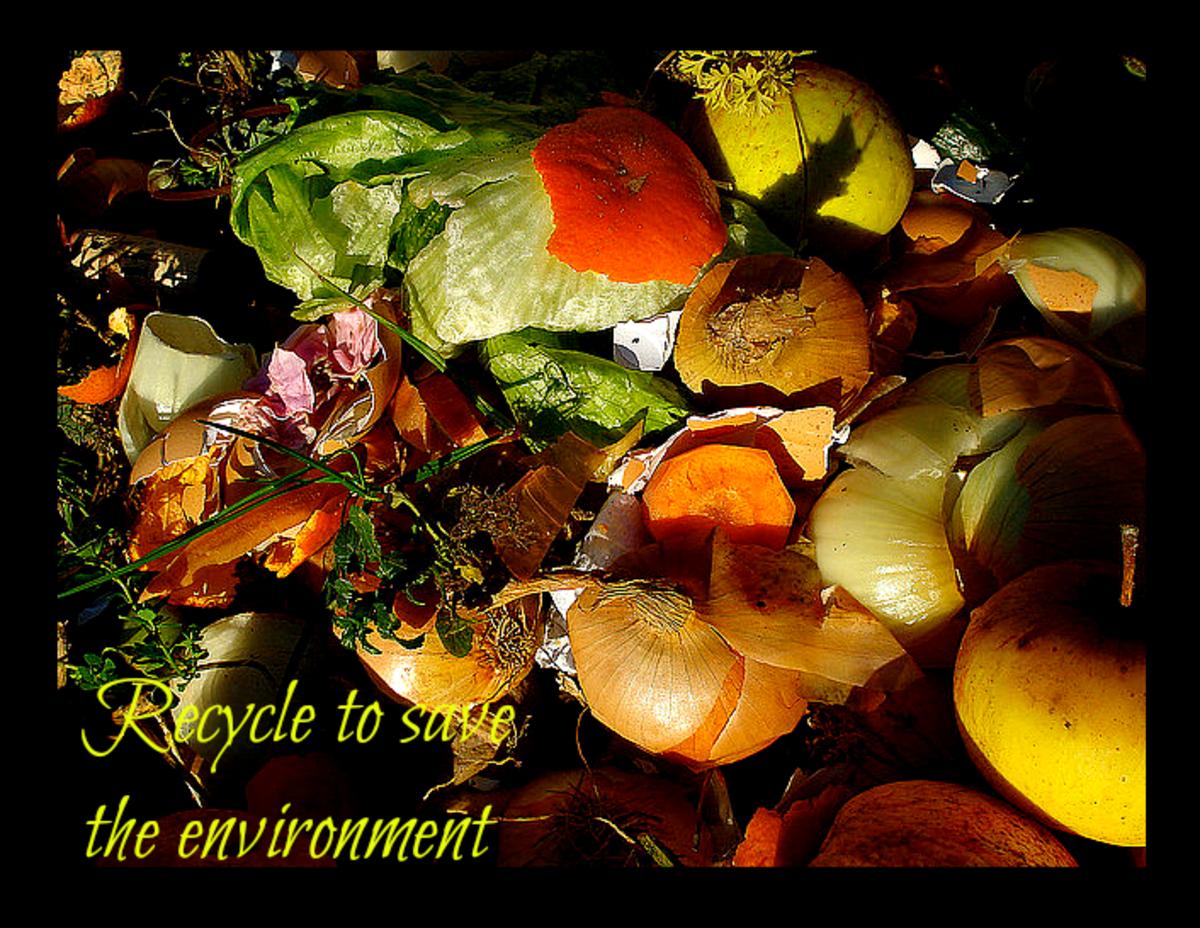 garbage-enzyme