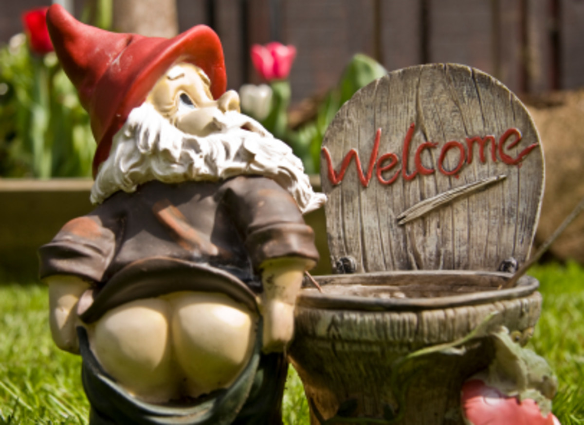 Funny Garden Gnomes - Where to Find Funny Gnomes