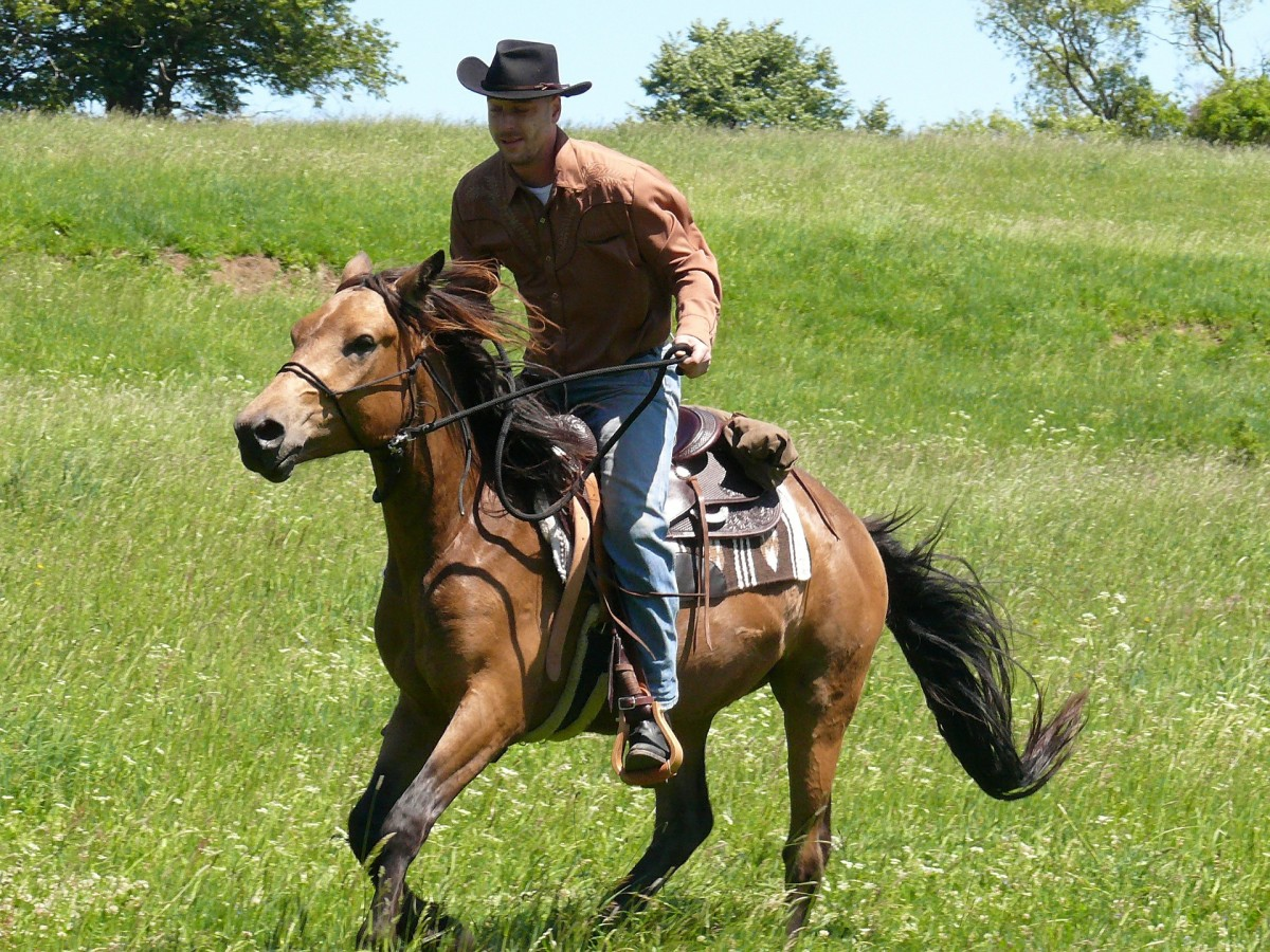The episode called Gadget Goes West has a cowboy and horse theme in it and this photo symbolizes what the Inspector does in that episode.