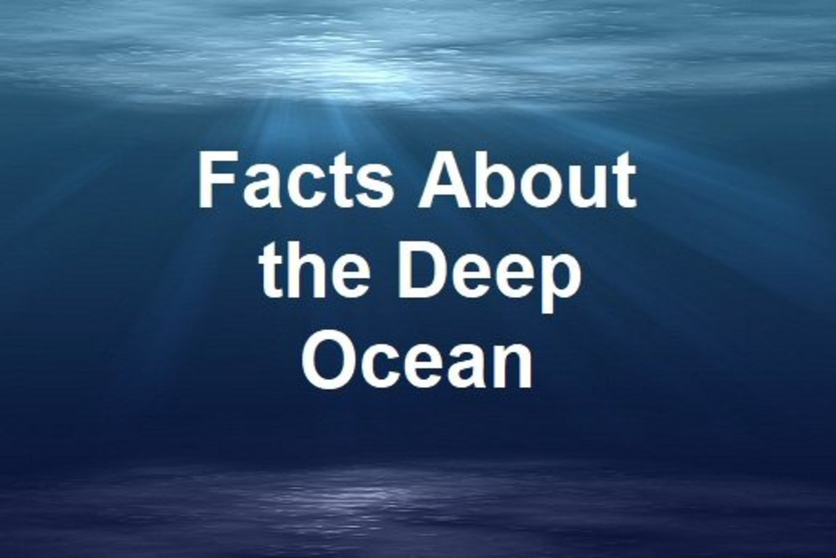 Most of the deep ocean floor remains unexplored
