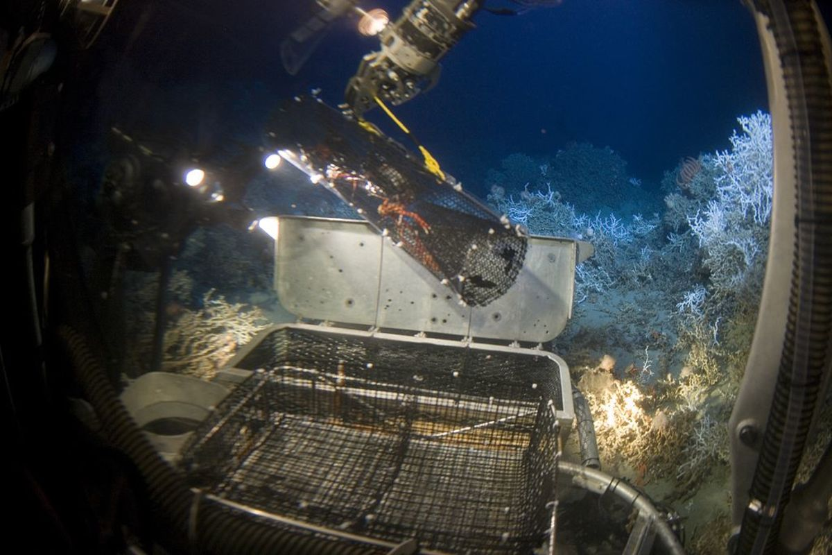 A photograph taken from inside a deep sea submersible craft, showing a robotic arm lifting a sample trap from the ocean floor