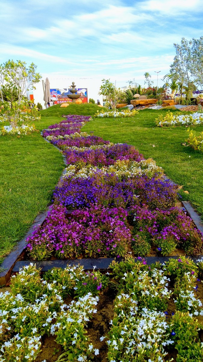 The Path to Happiness. Beautifully-designed gardens like this  is one of the attractions to the show #YanbuFLowersFestival2019