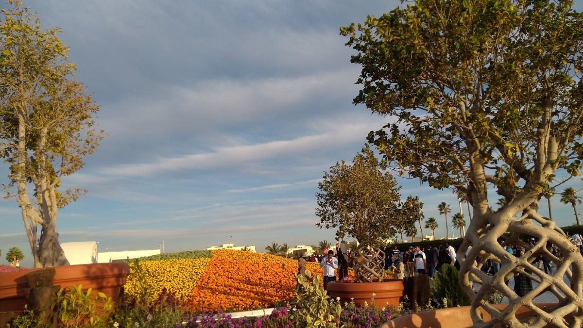 Trees and Flowers. #YanbuFLowersFestival2019
