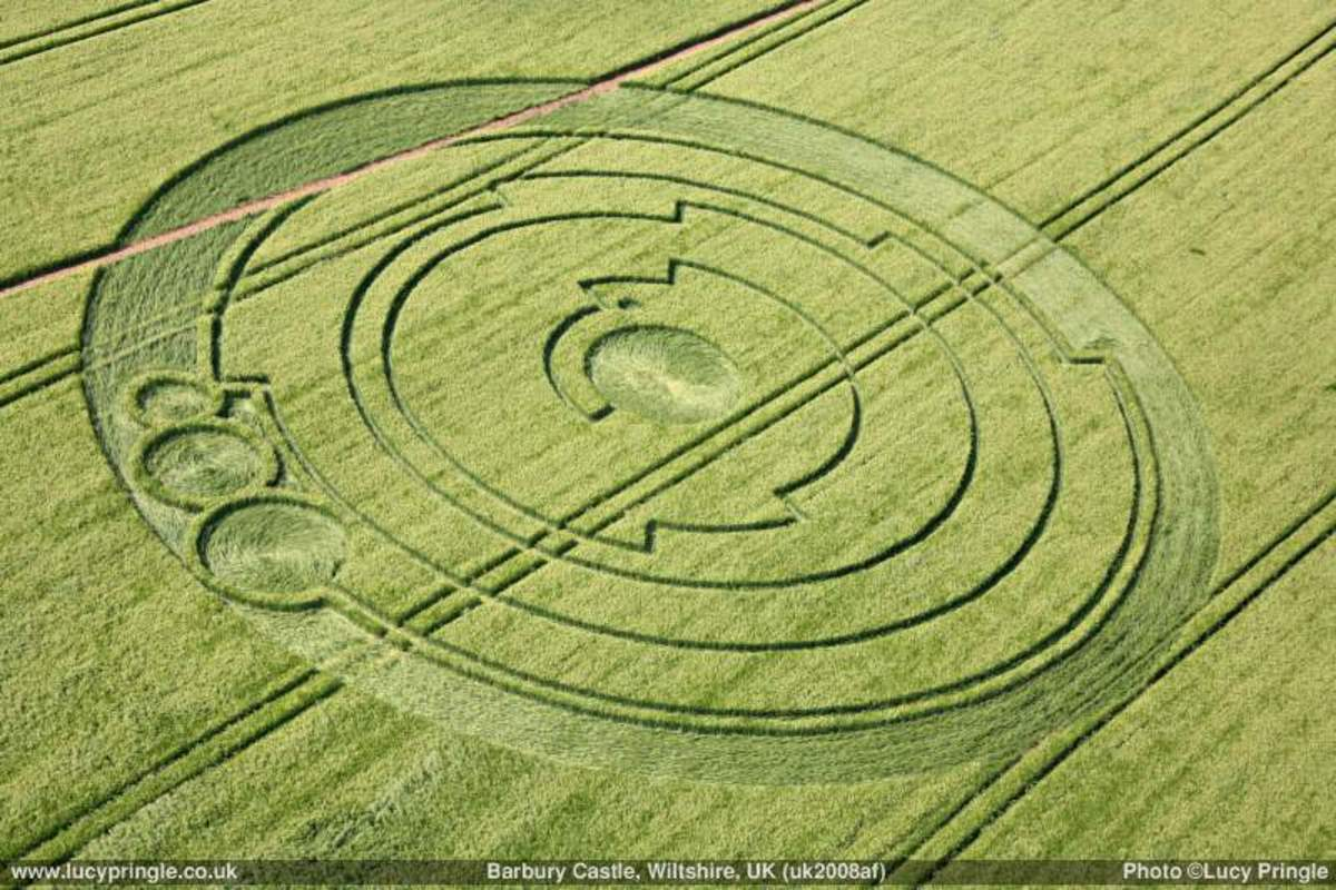Crop circles add spice to alien conspiracy theories.
