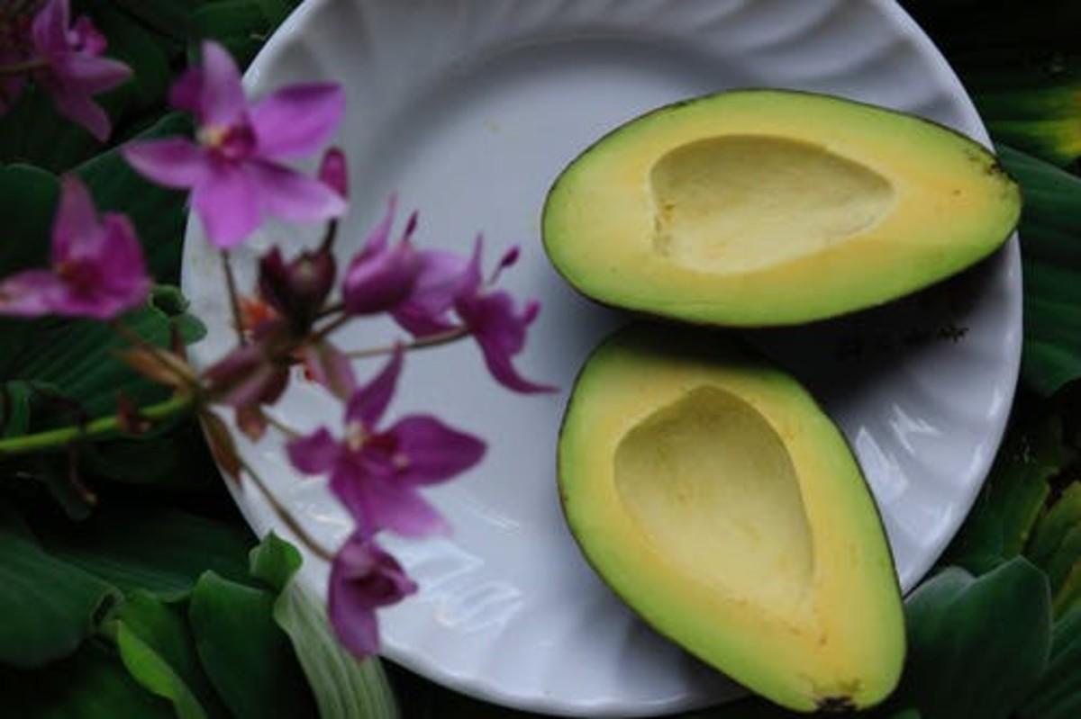 Avocado (Guacamole)