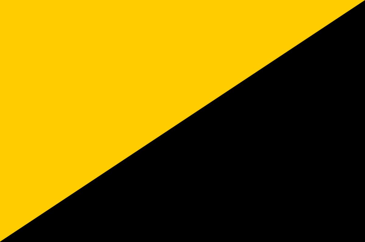 Anarcho-capitalist flag