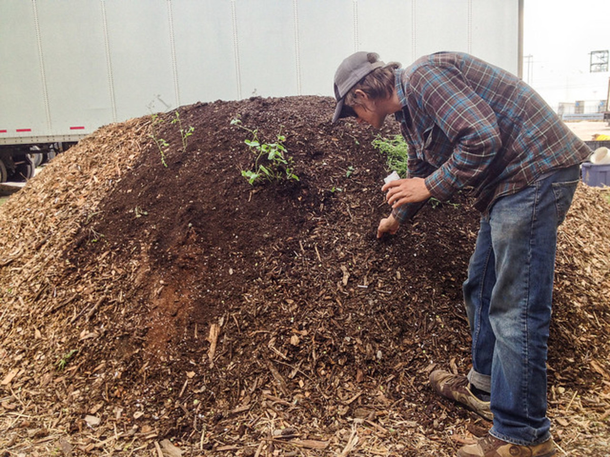 This is a hugelkultur bed being planted.  Notice how the bed is tall and steep.  It does not require as much stooping or kneeling for gardening.