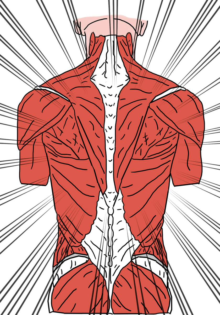 chronic-back-pain-prevent-back-surgery