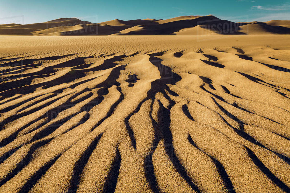 Wave Pattern in Desert