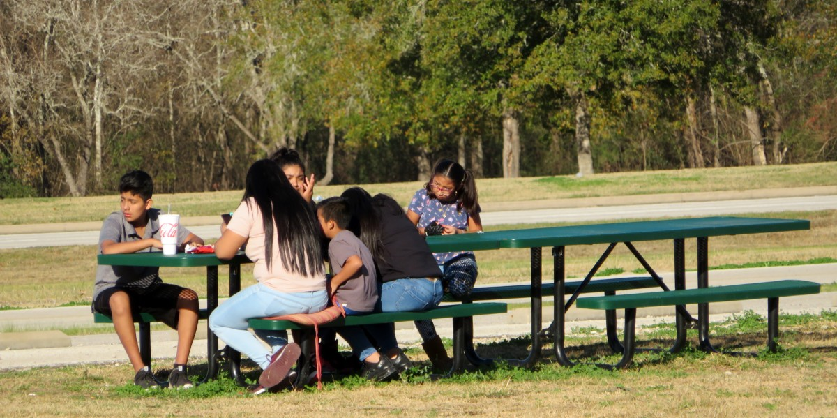 Picnic tables in Freedom Park