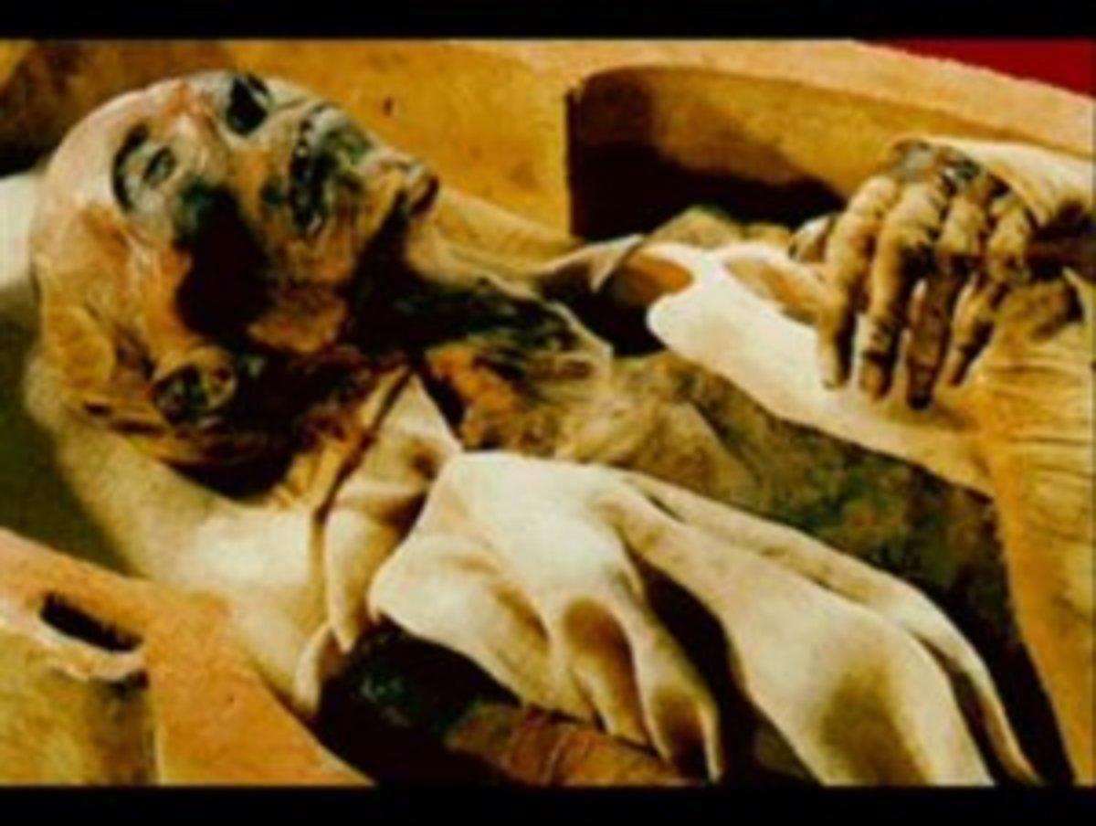 Fir'ounah King Ramesses II