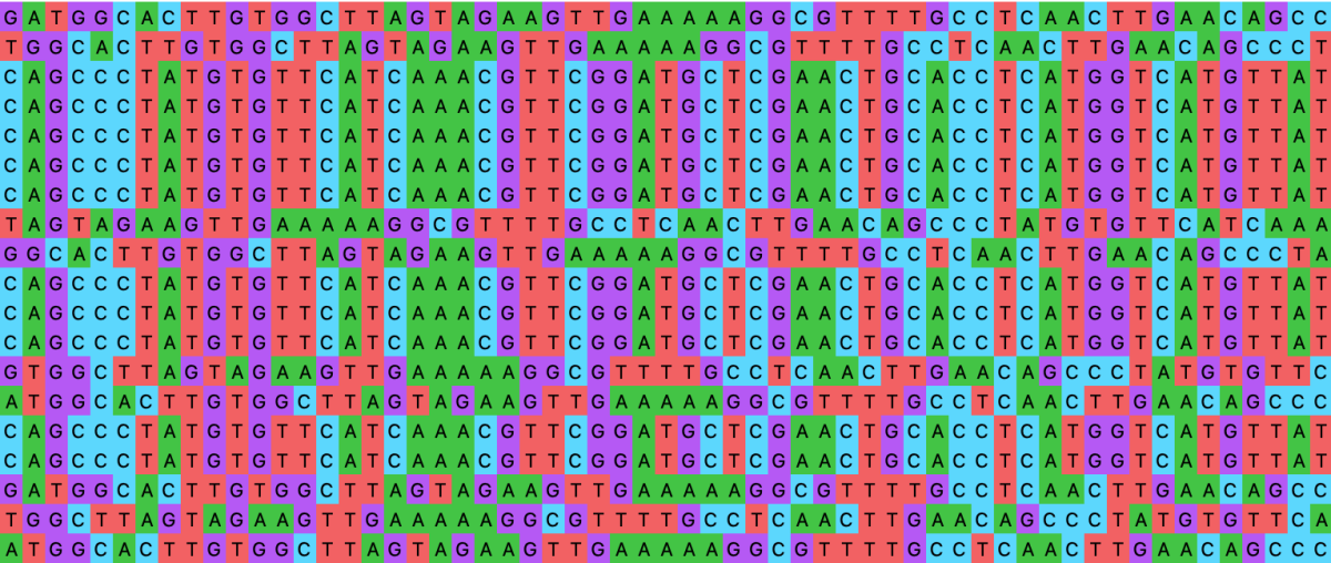 DNAge: Molecular Dissection of Species Identity