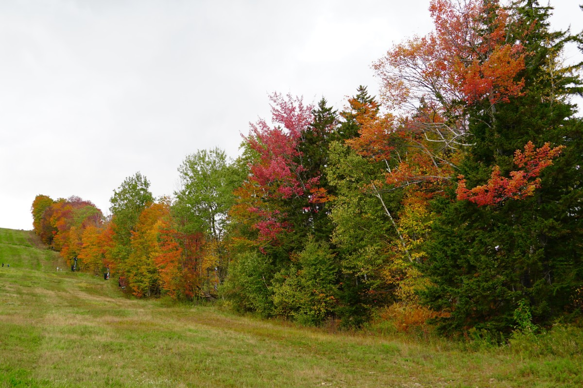 The colorful slopes of Mount Snow