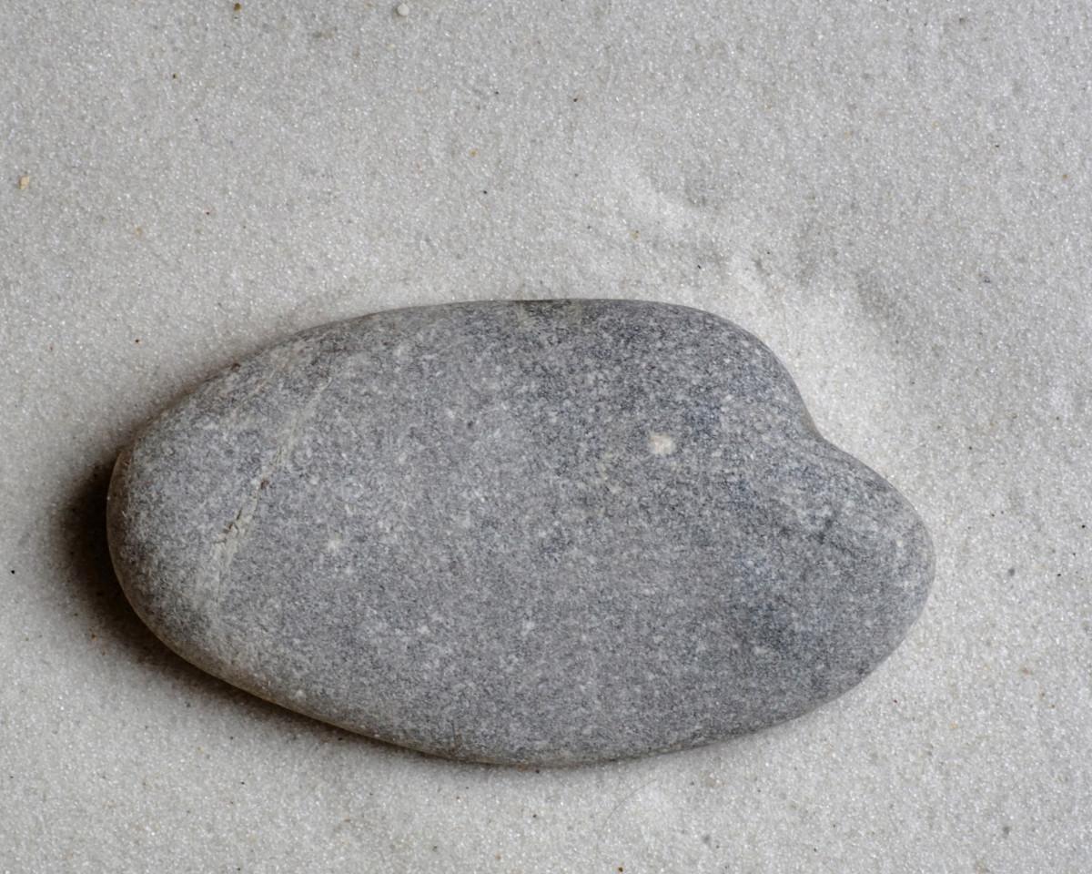 Lake Michigan Beach Stromatolite Fossil