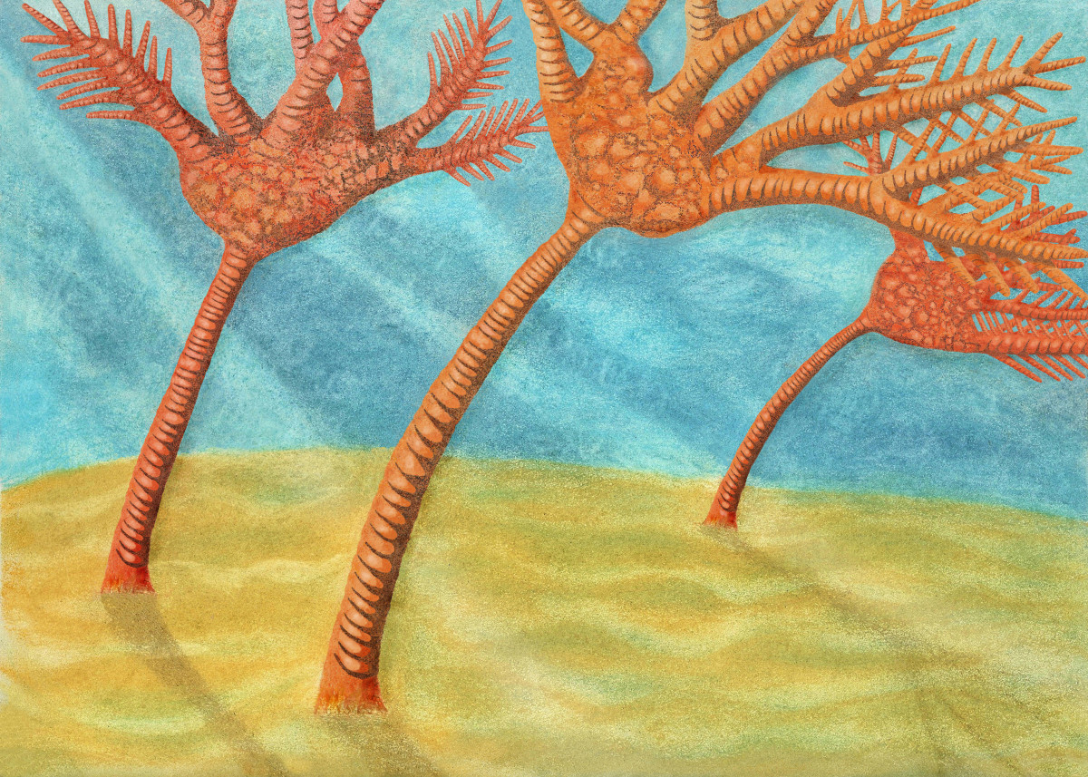 Rendition of Paleozoic Crinoids
