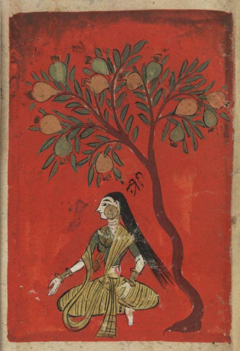 Rani Under a Pomegrante