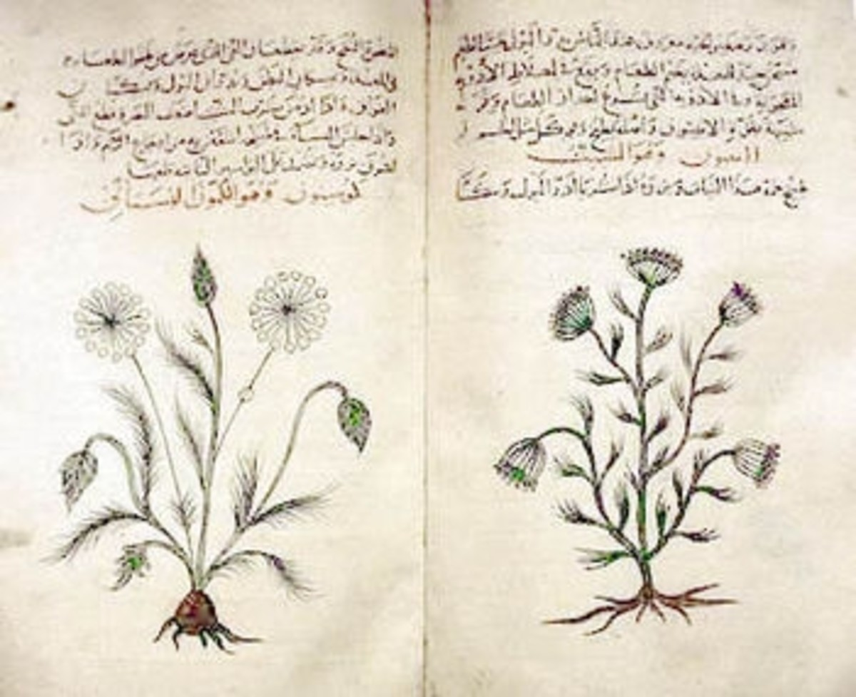 Descordes works saved and  translated by Muslim scholars