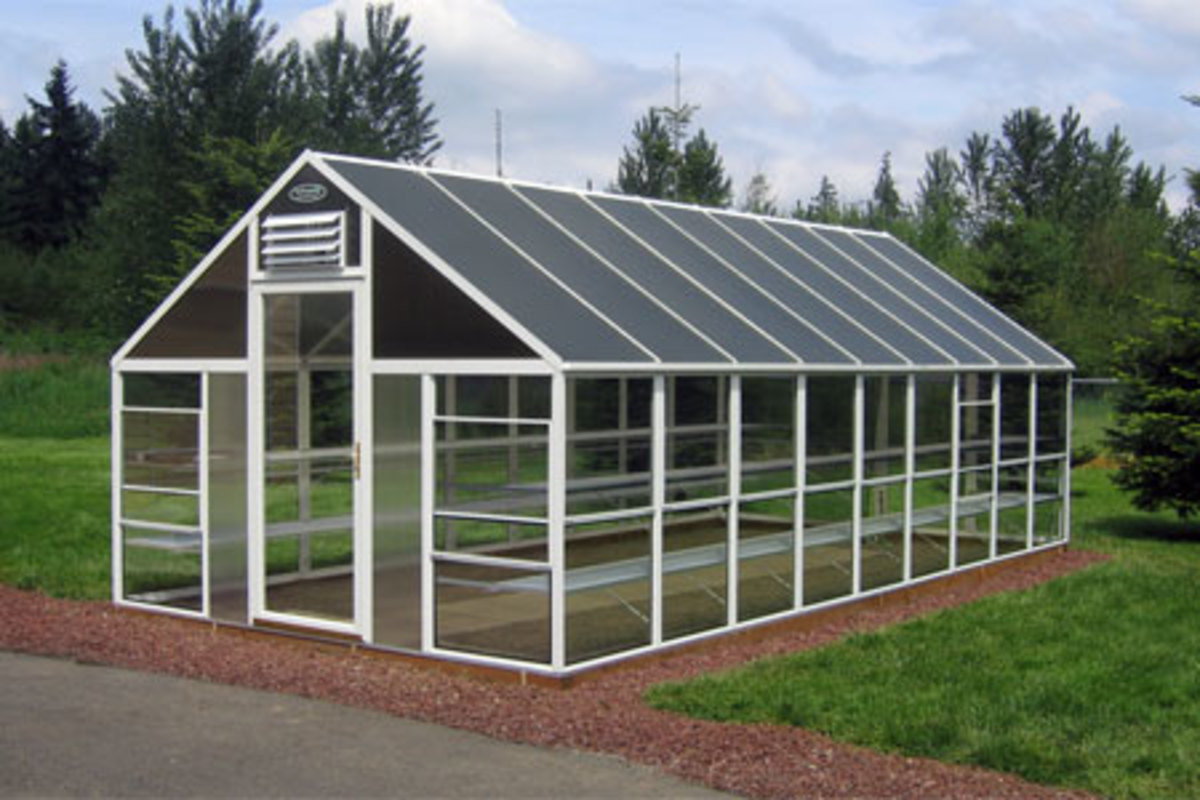 Buy Commercial-sized Greenhouses Online