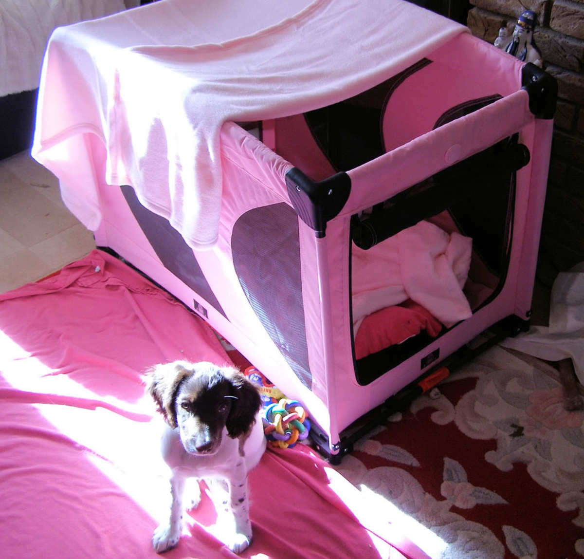 Soft-sided Collapsible Dog Play Pen with Roll Up Door