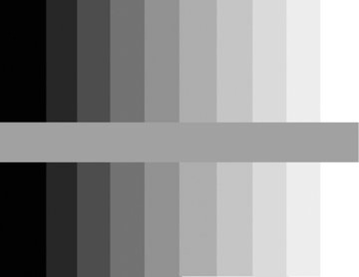 This is a Value Scale, also known as a Grey Scale.  The center color that runs horizontally through the scale is a medium color grey. Look how it changes when it is next to the other values.