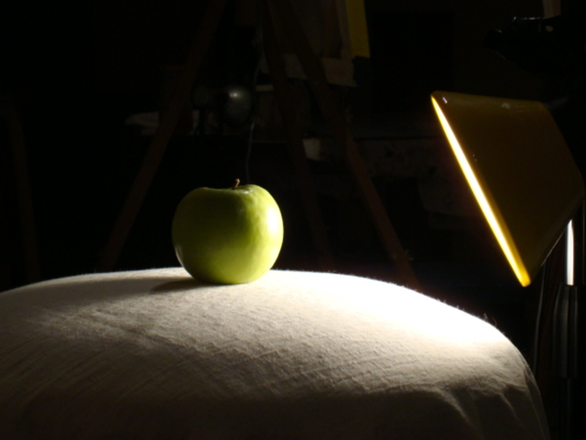 An example of how to light your simple still life.  Harsh lighting is the best to create a sharp contrast of light and shadow.