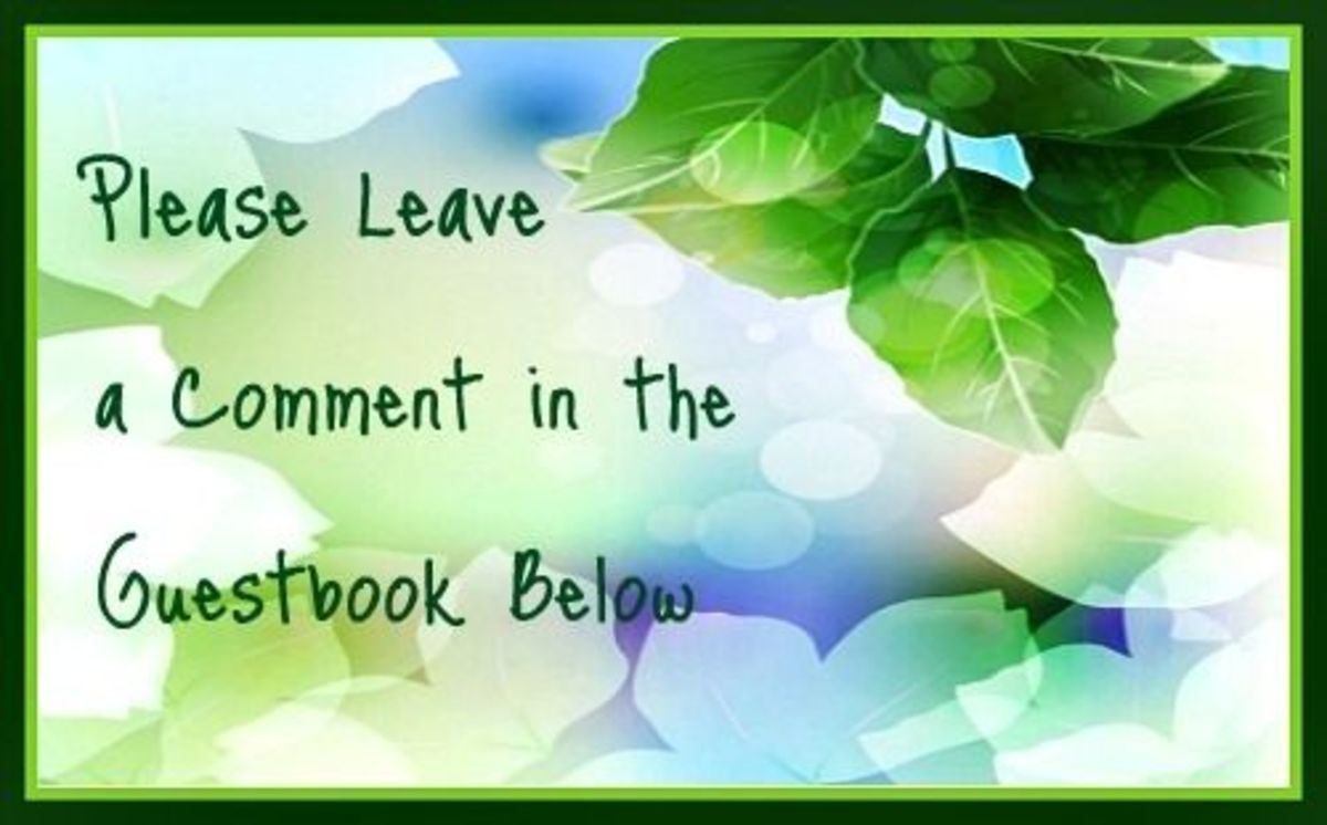 Leave a Comment in Guestbook