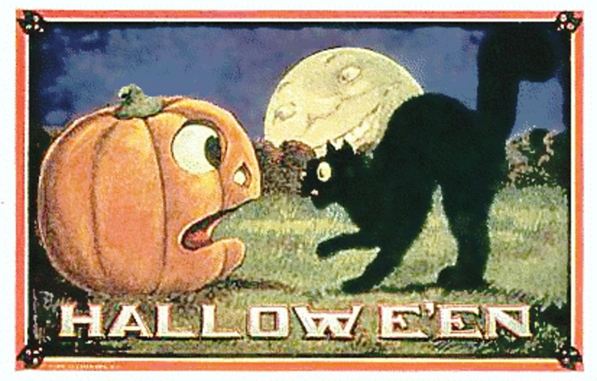 Vintage Halloween card black cat and pumpkin public domain image