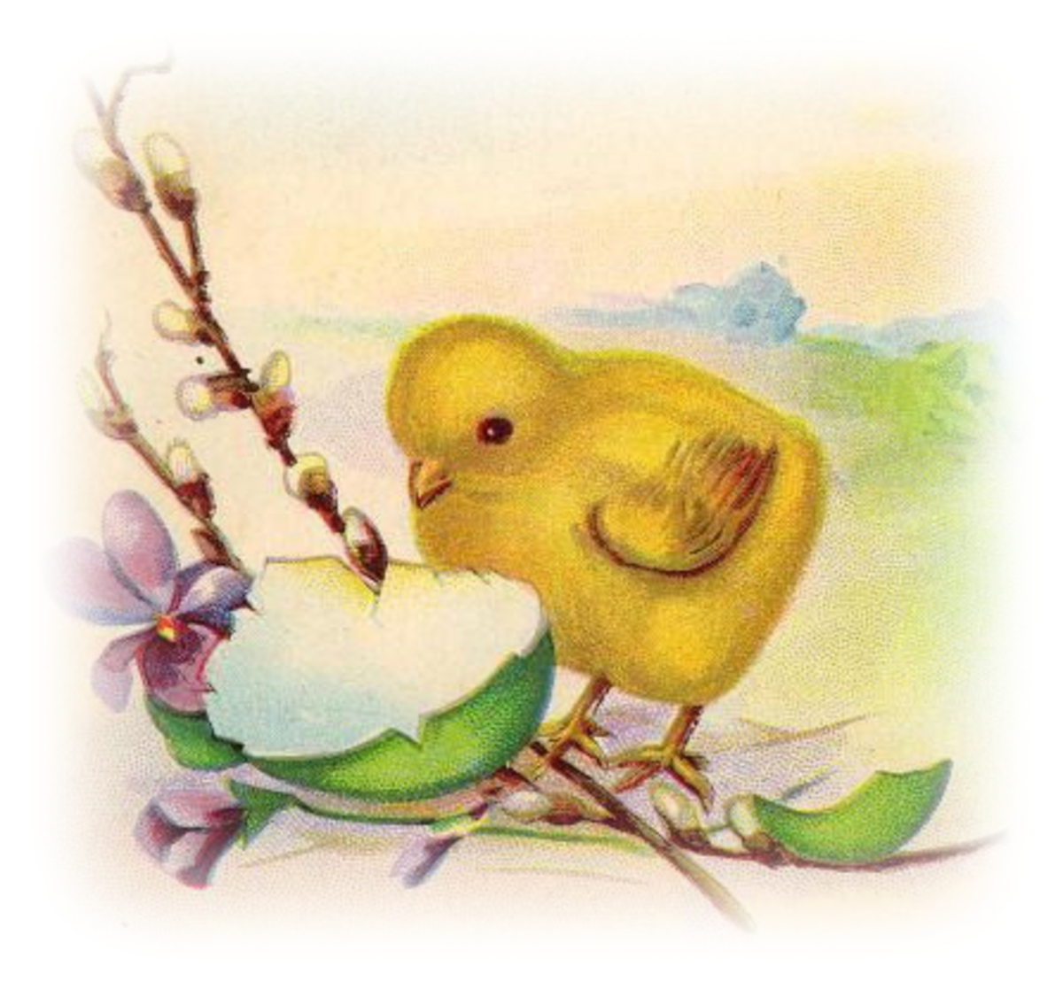 Free vintage Easter clipart images: Yellow baby chick with broken Easter egg shell
