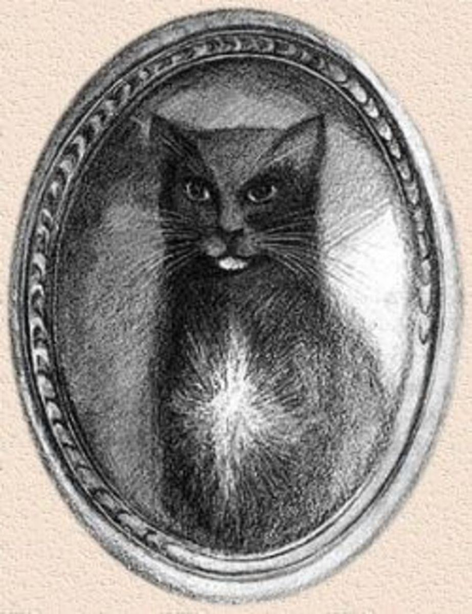 Sketch of Trim by Cpt Matthew Flinders
