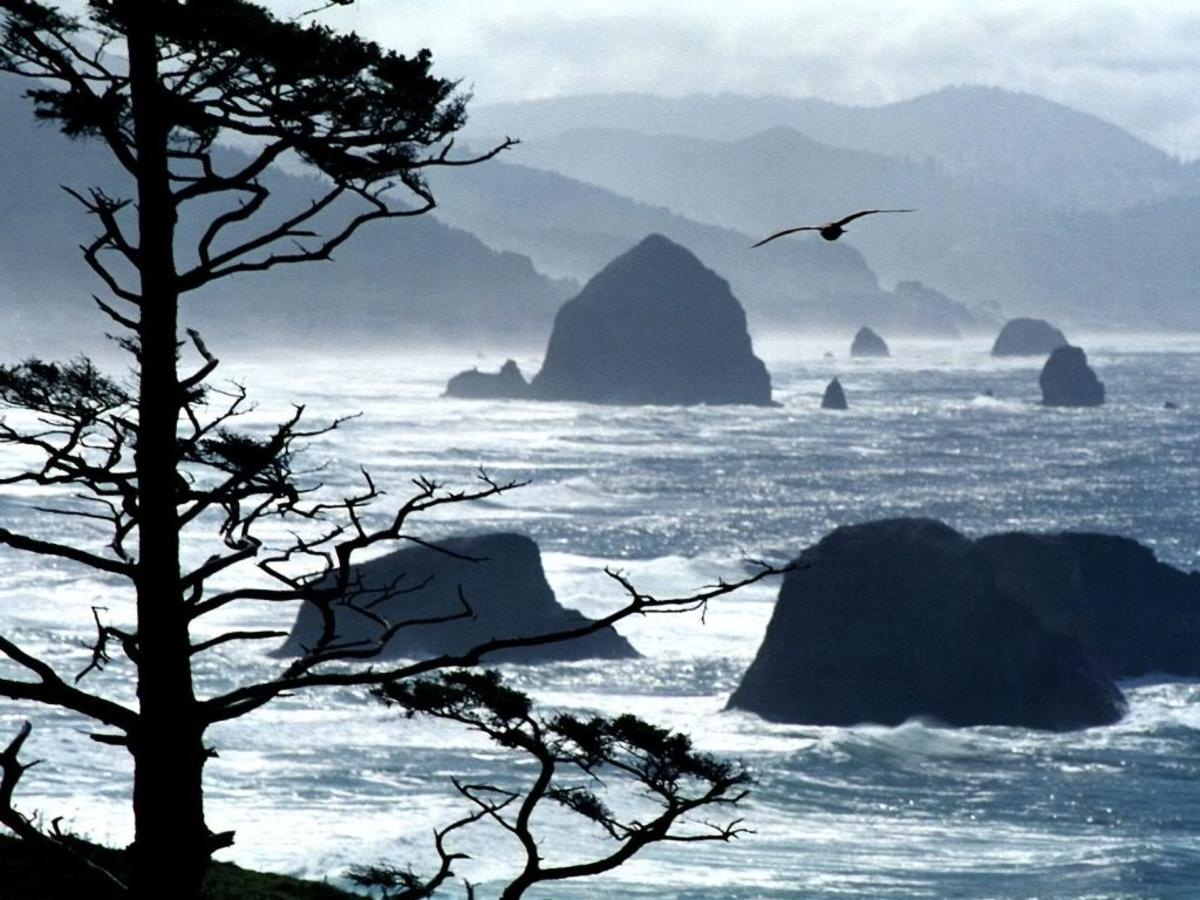 Ecola Point, Oregon coast (just and hour and a half drive from Portland).