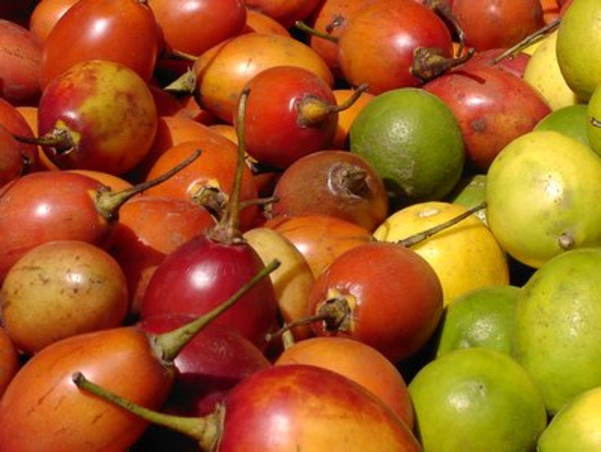 Tomate de Arbol - also known as tamarillo