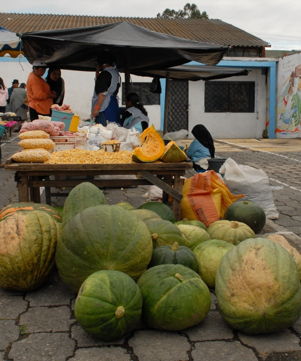 Giant squash and shucked corn - two staples of the local diet - found at the Outdoor Market.