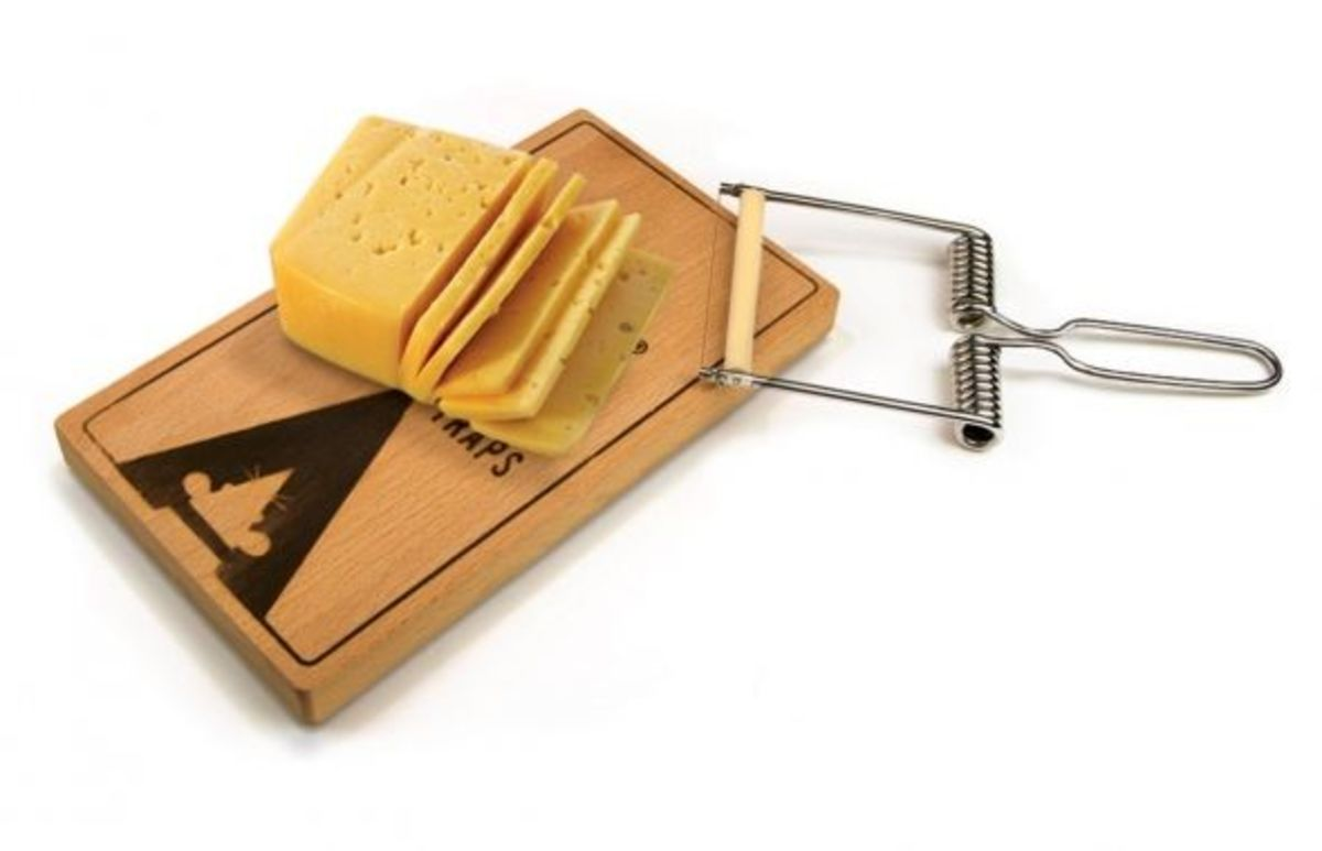 Fred and Friends Oh Snap Cheese Cutter