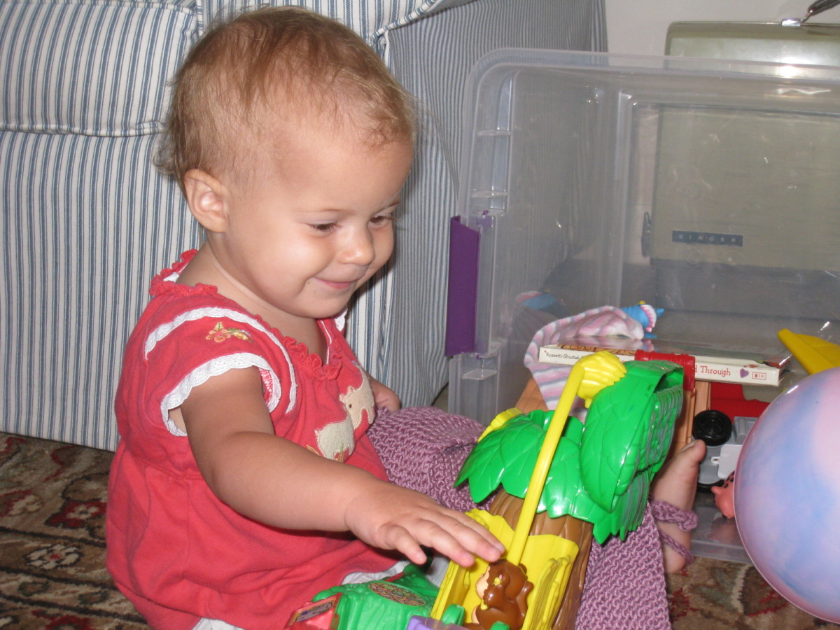 My little girl playing with one of the earlier generation Fisher Price Zoo toys.  She adored it, and the newer versions of this cute little play set are even more fun with more activities and engaging animal sounds.