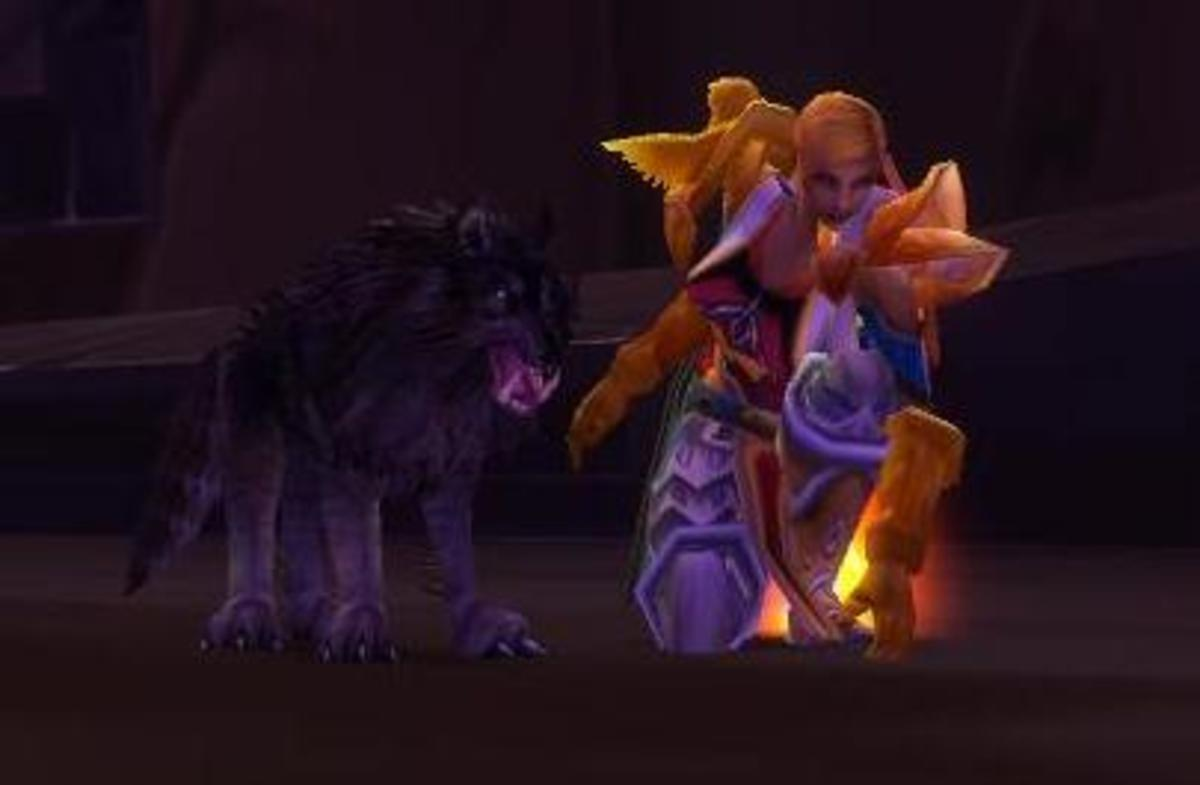 This picture was well cropped. It is my first character at lvl 60 in Hellfire Ramparts. The position was created by looting a nearby body. The pet is a Worg Pup.