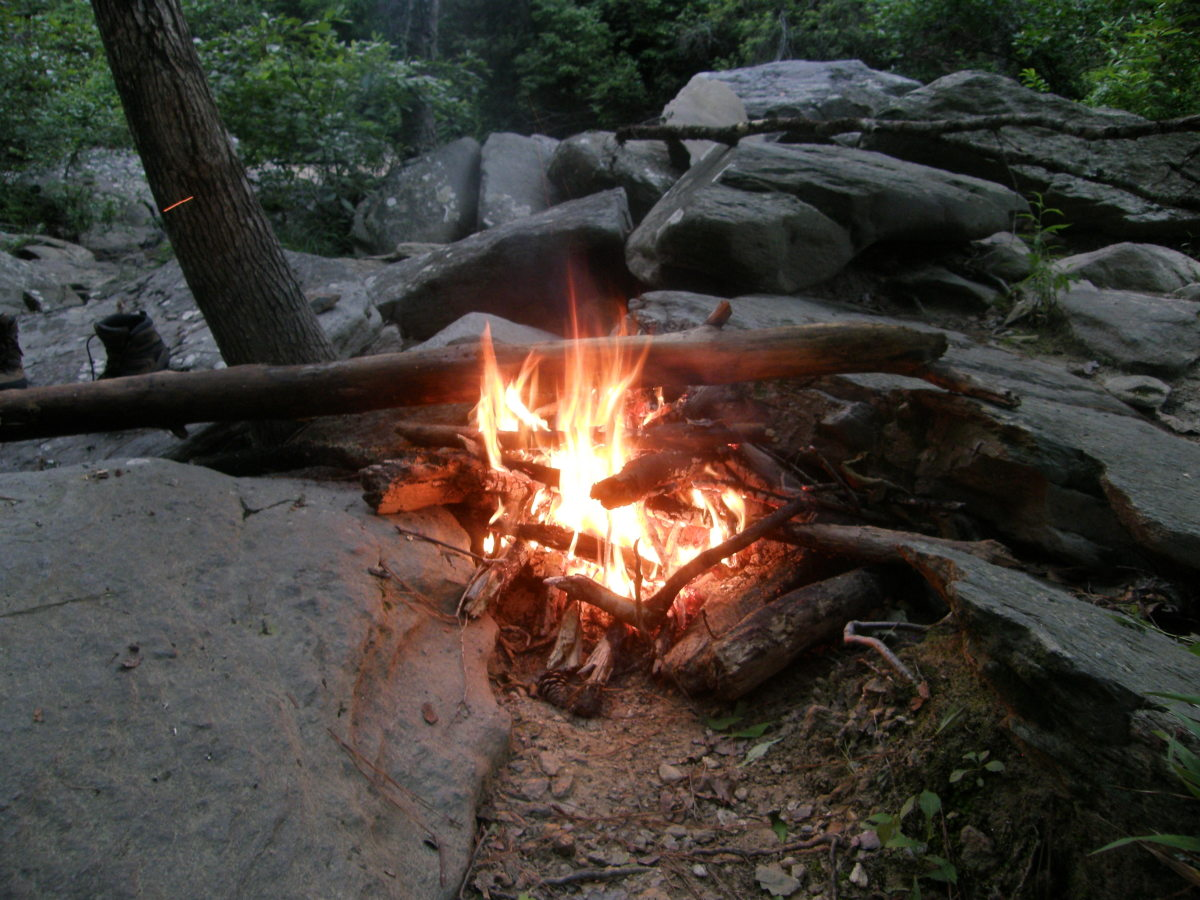 Wilderness Survival:  A General Purpose Guide