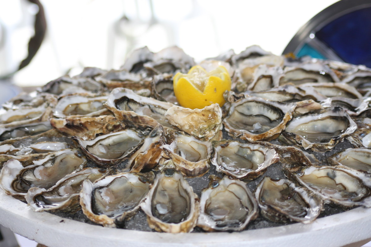 For oyster recipes, fresh oysters are almost always best.