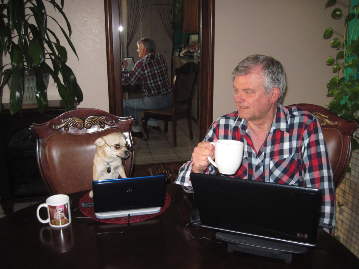 My chihuahua assistant, Chika, and I taking a coffee break while writing