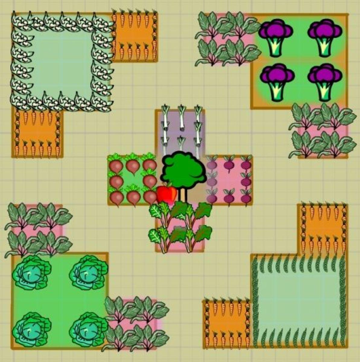 Fall - Winter potager garden layout
