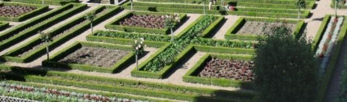 potager garden plan