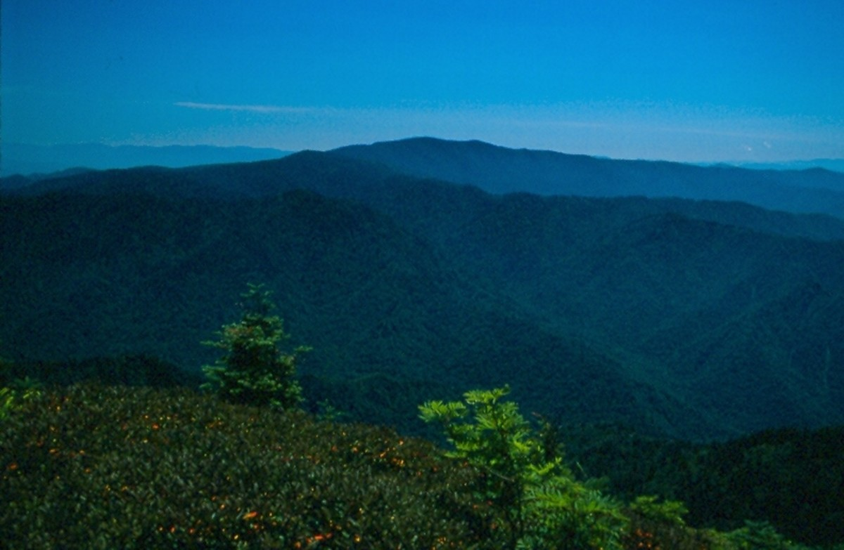 Great Smoky Mountains National Park from Mt. LeConte.